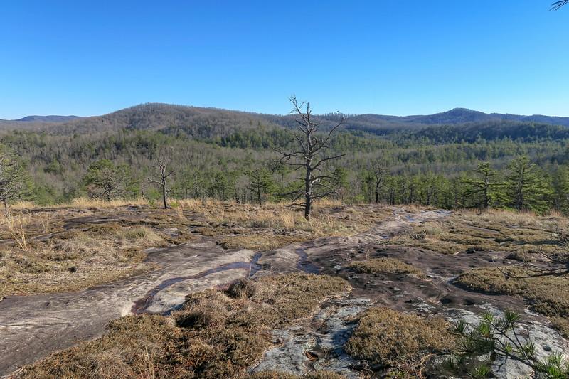 Cedar Rock Trail -- 2,900'