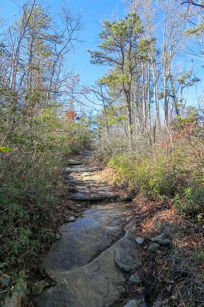 Cedar Rock Trail -- 2,750'