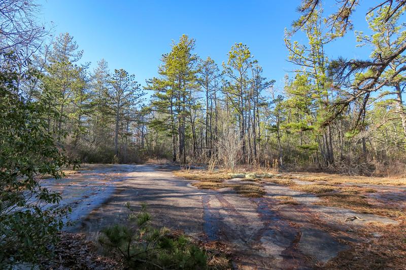 Cedar Rock Trail -- 2,700'