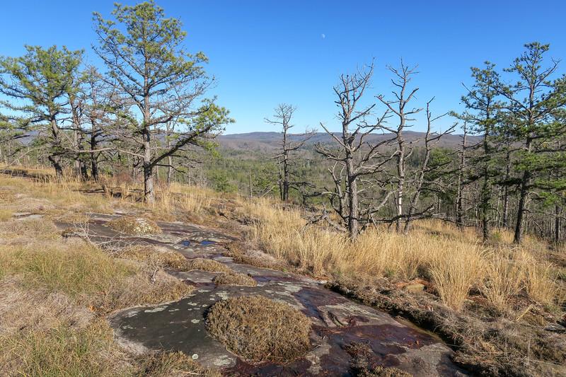 Cedar Rock Trail -- 2,930'