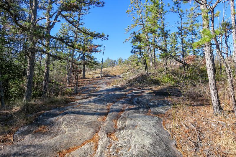 Cedar Rock Trail -- 2,800'