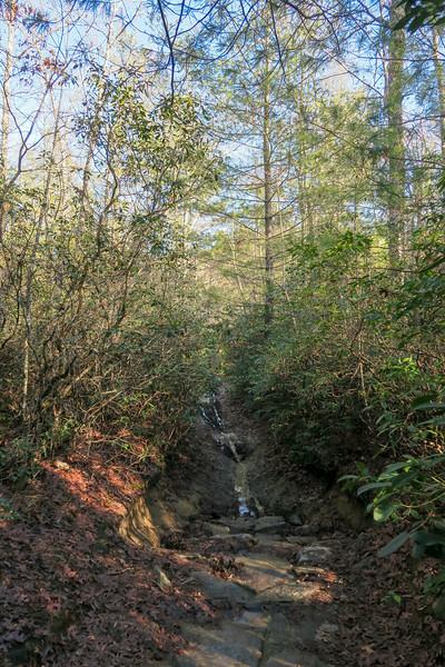 Cedar Rock Trail -- 2,680'