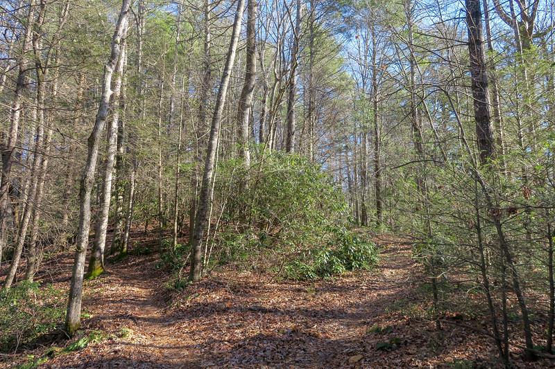 Nooks Trail -- 2,700'