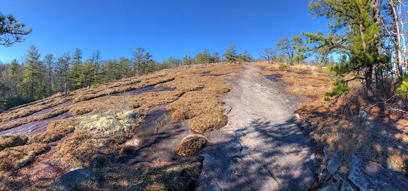Cedar Rock Trail -- 2,820'