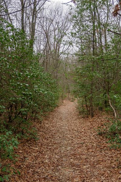 Joanna Road -- 2,790'