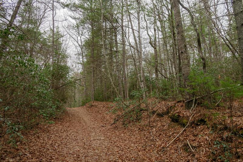 Joanna Road -- 2,720'
