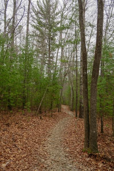Grassy Creek Trail -- 2,700'