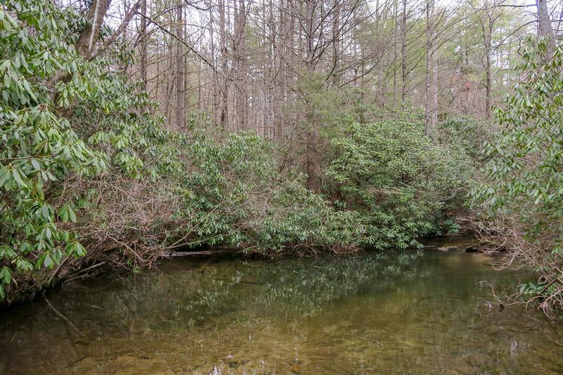 Grassy Creek -- 2,500'