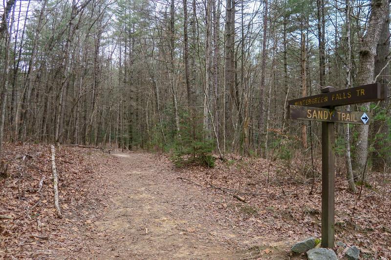 Sandy/Wintergreen Falls Trail Junction -- 2,530'