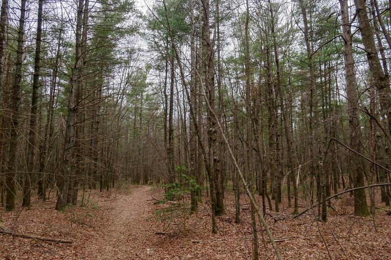 Joanna Road -- 2,880'