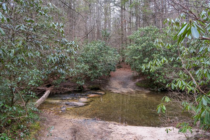 Grassy Creek Trail @ Grassy Creek -- 2,500'