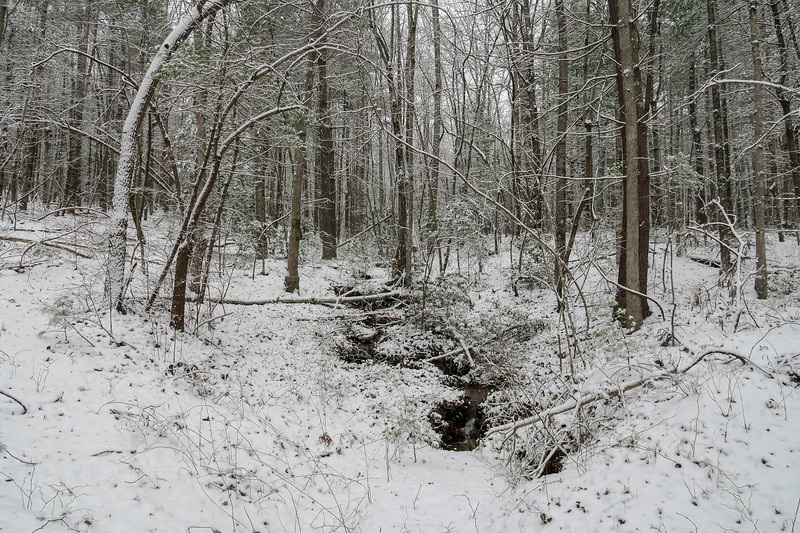 Ridgeline Trail -- 2,750'