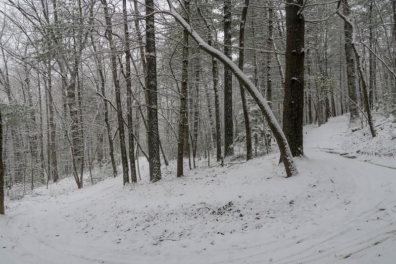 Ridgeline Trail -- 2,470'