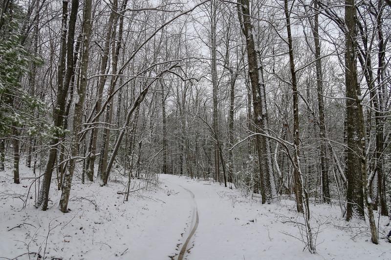 Ridgeline Trail -- 2,730'
