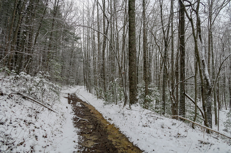 Ridgeline Trail -- 2,720'