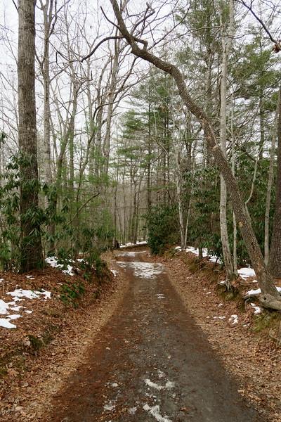 Triple Falls Trail  -- 2,430'