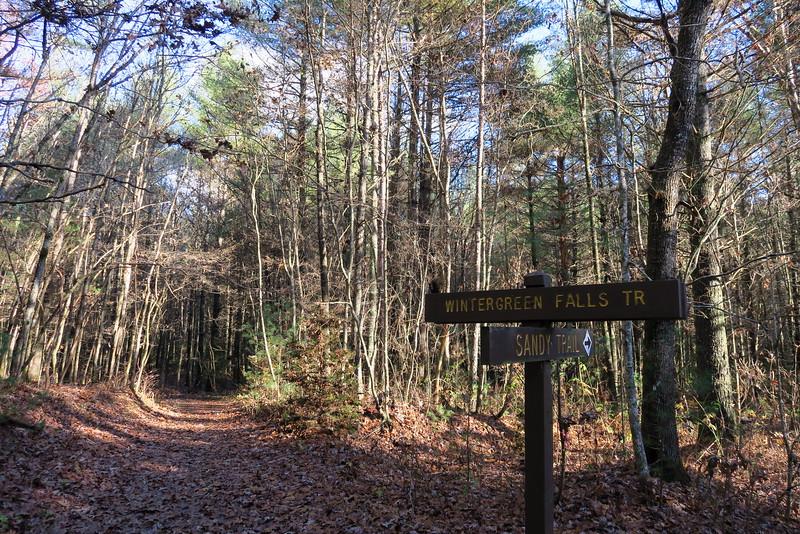 Wintergreen Falls-Sandy Trail Junction
