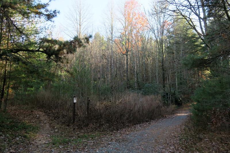 Tarklin Branch Road