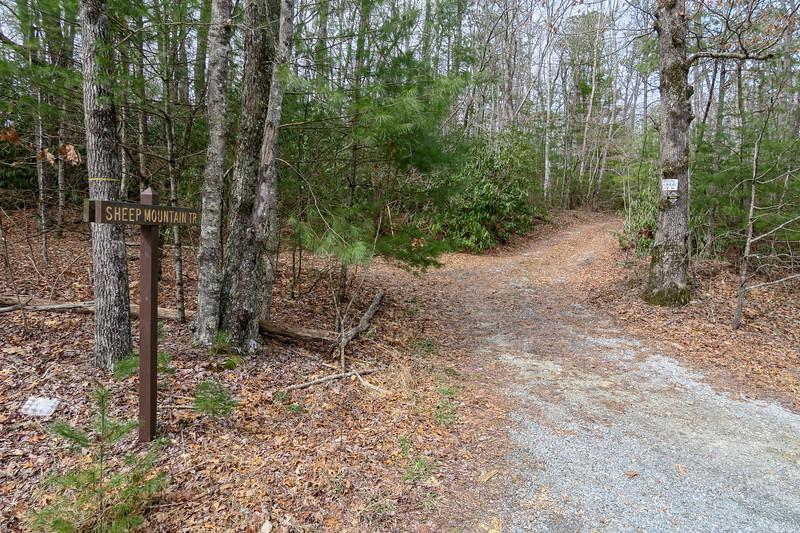 Sheep Mountain Trail @ Staton Road -- 2,740'