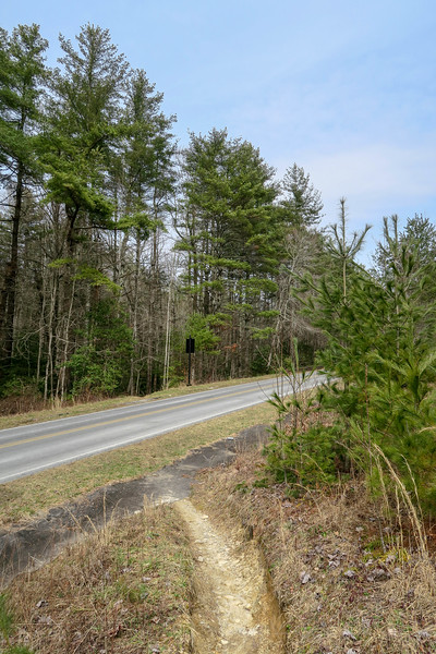Pine Tree Trail @ Staton Road (South Crossing) -- 2,800'