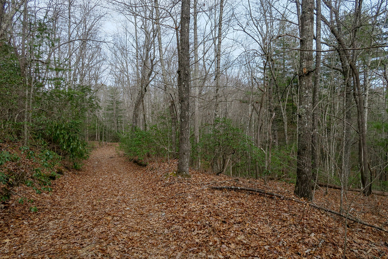 Sheep Mountain Trail -- 2,750'