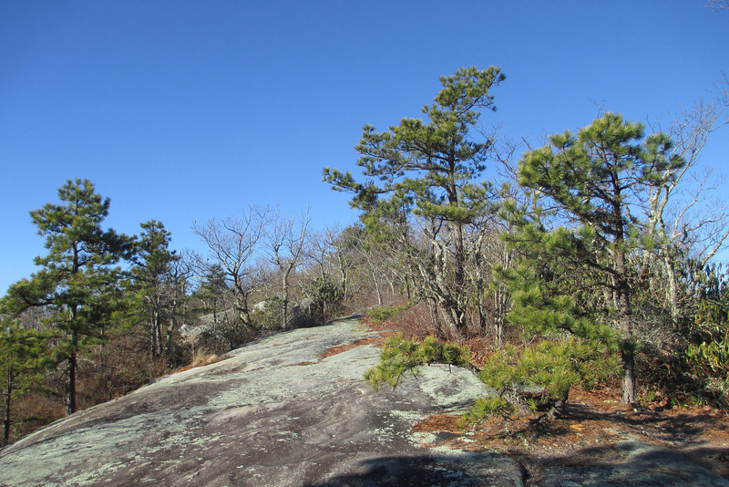 Stone Mountain Summit - 3,620'