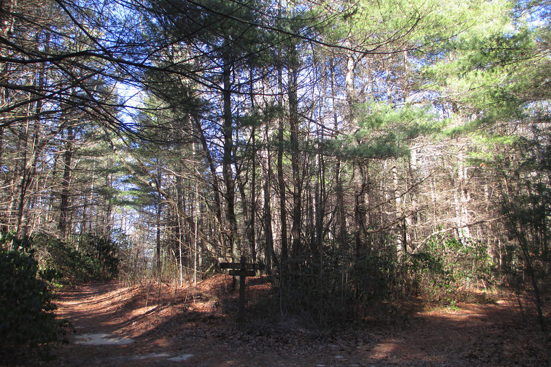 Rocky Ridge-Stone Mountain Trail Junction