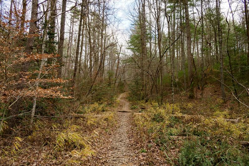 Mountains-to-Sea Trail -- 2,160'