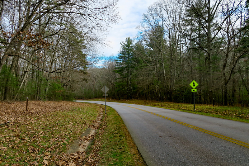 Mountains-to-Sea Trail (Blue Ridge Parkway) -- 2,220'