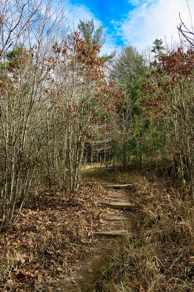 Mountains-to-Sea Trail -- 2,110'