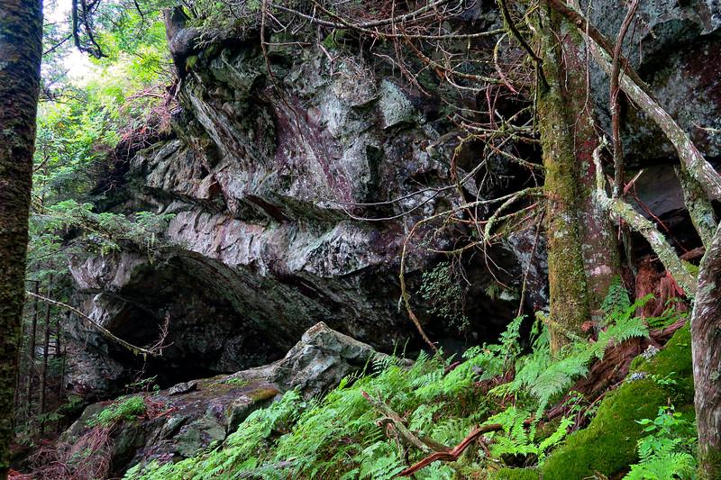 Mountains-to-Sea Trail - 5,780'