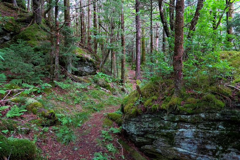 Mountains-to-Sea Trail - 6,040'