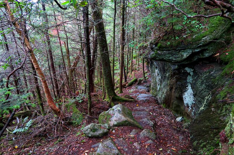 Mountains-to-Sea Trail - 5,800'