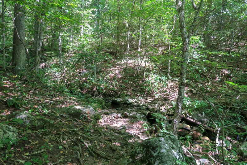 Mountains-to-Sea Trail @ Poplar Creek -- 4,040'