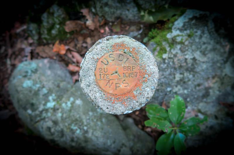 Mountains-to-Sea Trail -- 4,520'