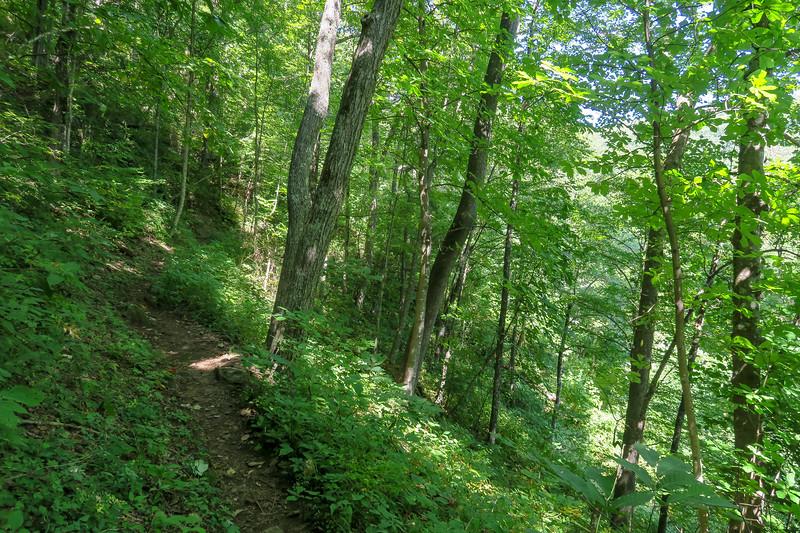 Mountains-to-Sea Trail -- 4,000'