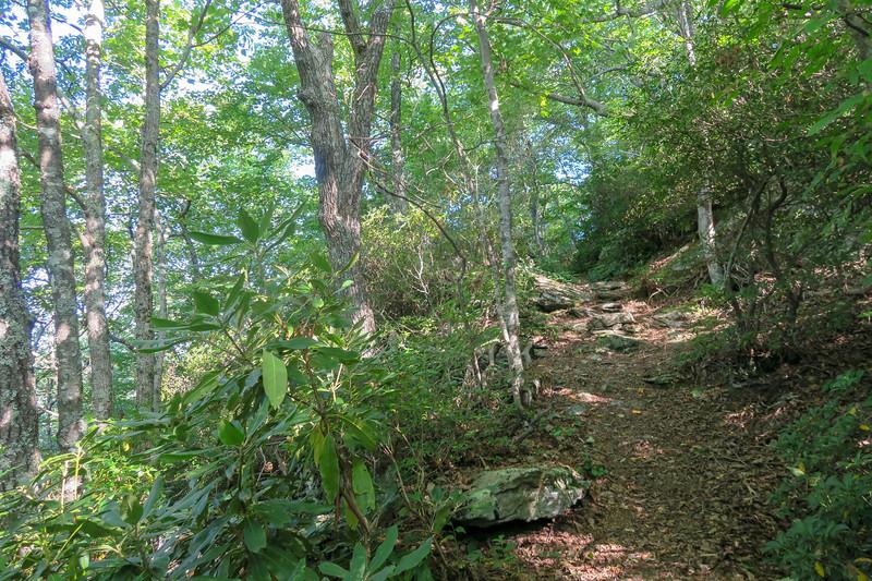 Mountains-to-Sea Trail -- 4,470'