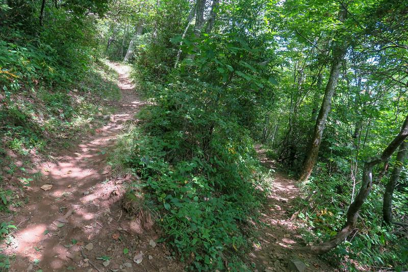 Mountains-to-Sea Trail -- 4,900'