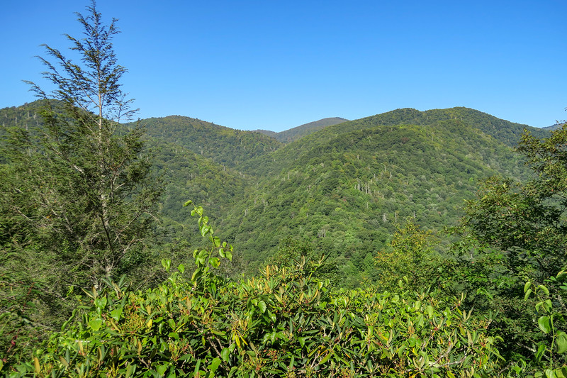 Cherry Cove Overlook Trailhead -- 4,327'