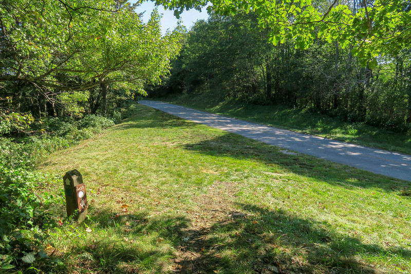 Mountains-to-Sea Trail @ Blue Ridge Parkway -- 4,540'