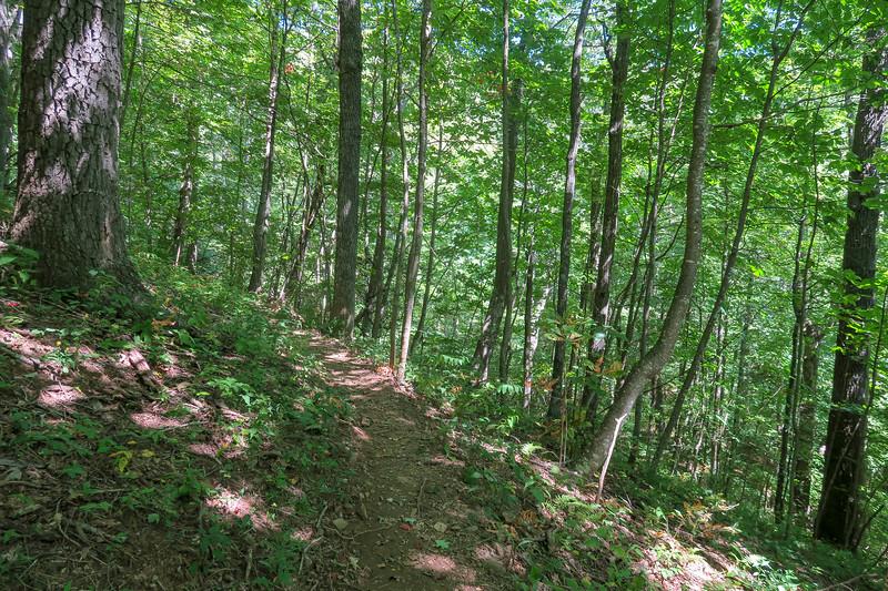 Mountains-to-Sea Trail -- 4,030'