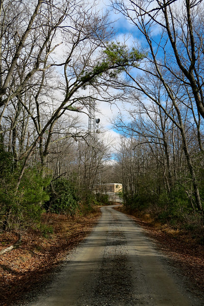 Mountains-to-Sea Trail/F.R. 106 -- 2,910'