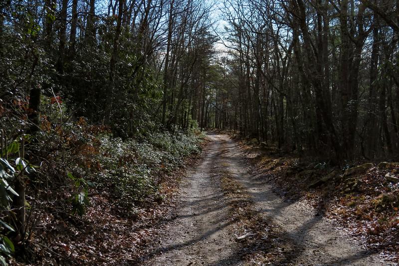 Mountains-to-Sea Trail/F.R. 106 -- 3,050'