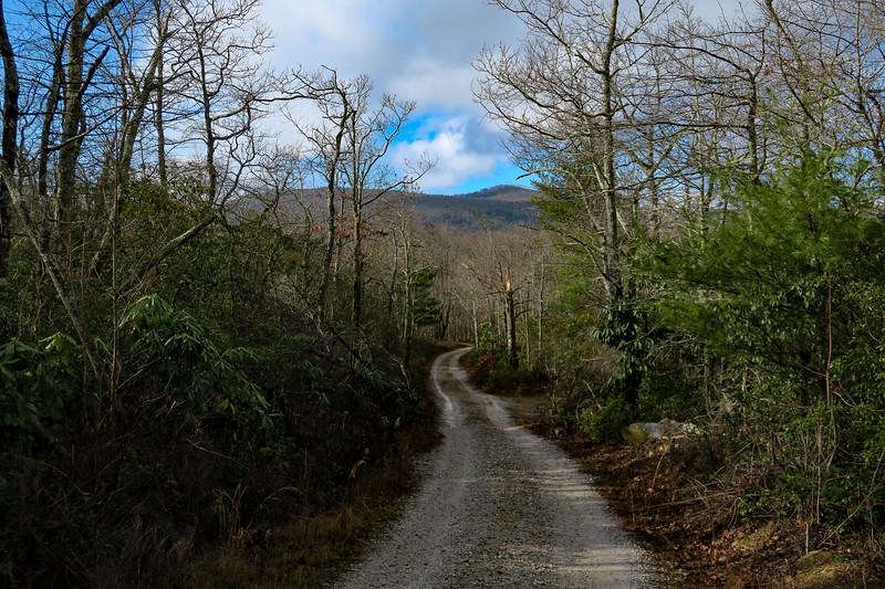 Mountains-to-Sea Trail/F.R. 106 -- 2,920'