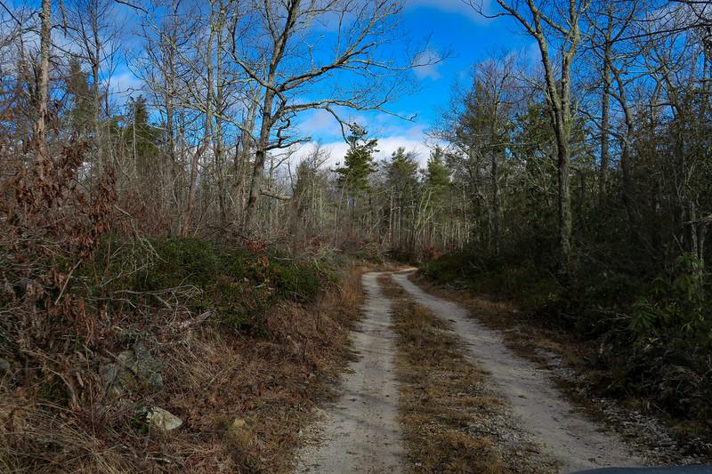 Mountains-to-Sea Trail/F.R. 106 -- 3,220'