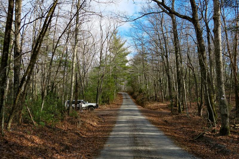 Mountains-to-Sea/Overmountain Trail Junction -- 2,620'