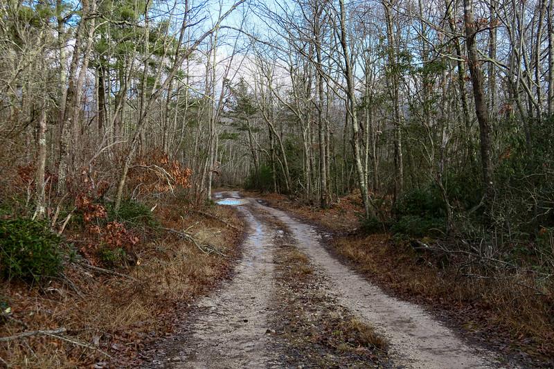 Mountains-to-Sea Trail/F.R. 106 -- 3,170'