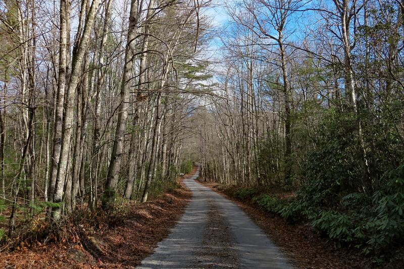 Mountains-to-Sea Trail/F.R. 106 -- 2,640'