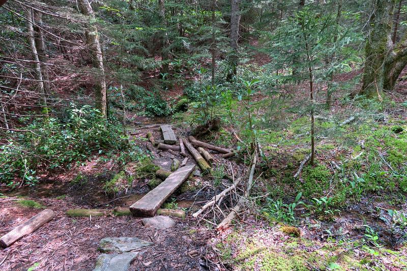 Mountains-to-Sea Trail -- 5,120'