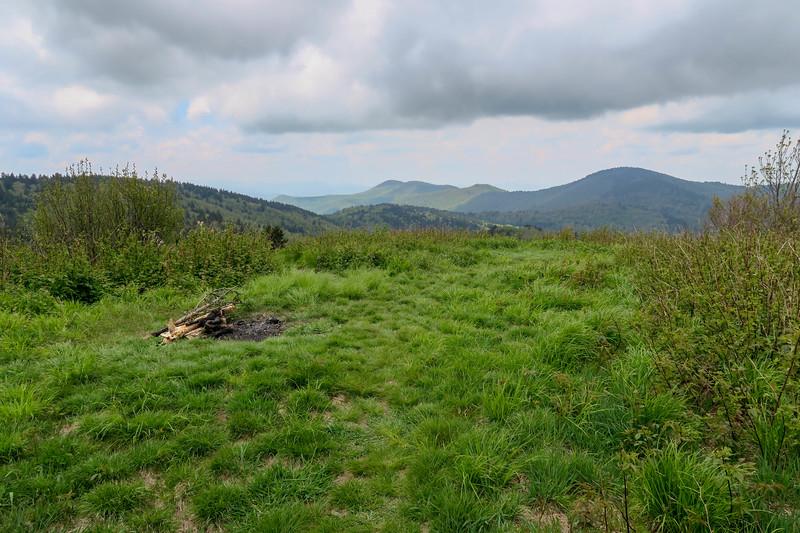 Fork Ridge Meadows -- 5,800'